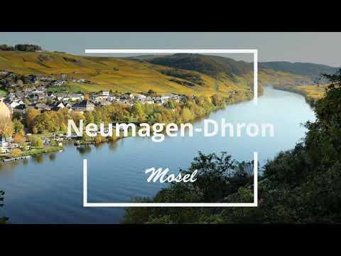 Neumagen-Dhron an der Mosel Flusskilometer 152