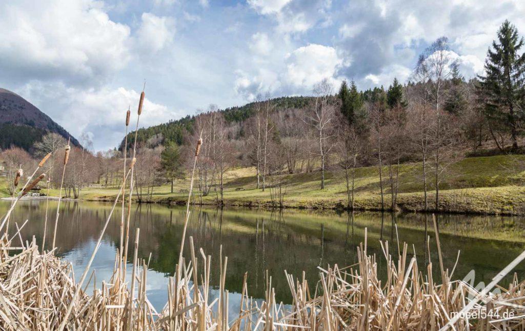 Mosel mit Teich und Landschaft