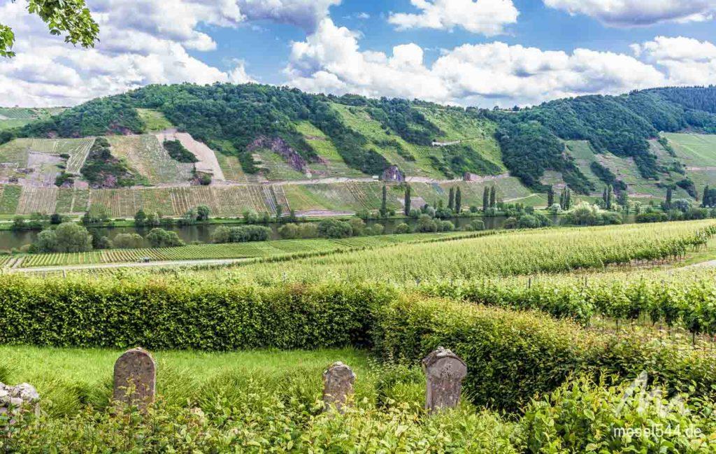 Moseltal und Jüdischer Friedhof