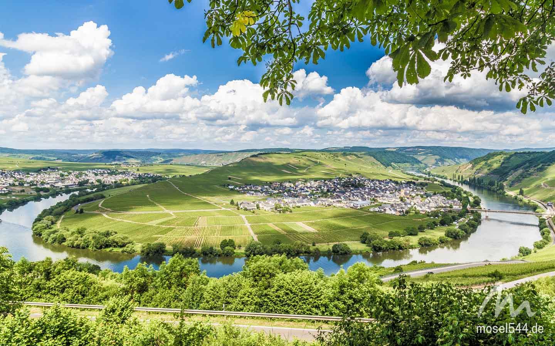 Trittenheim Panorama