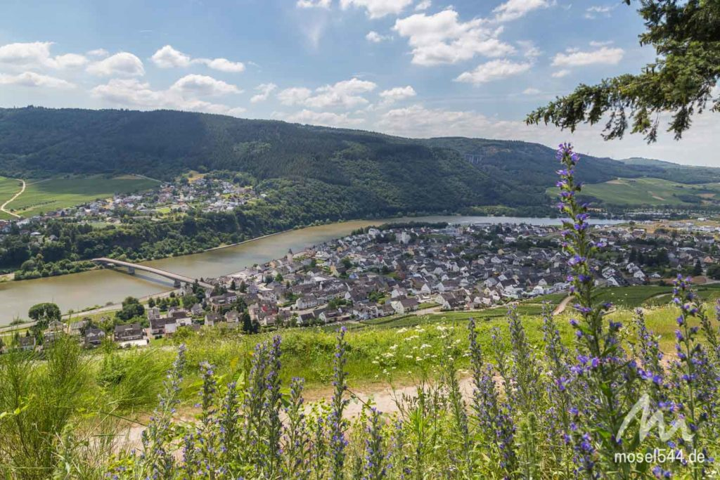 Mehring-Mosel