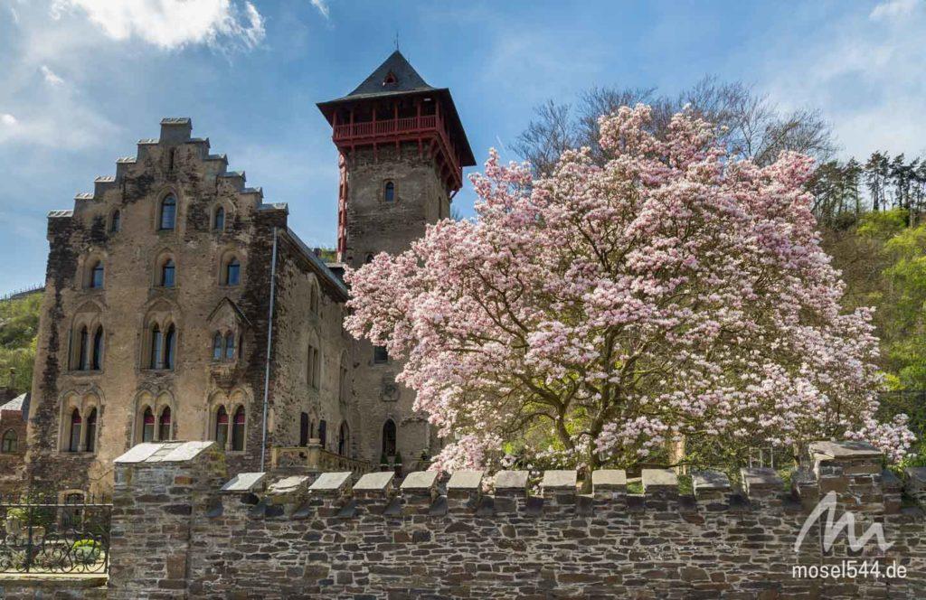 Schloss Liebig