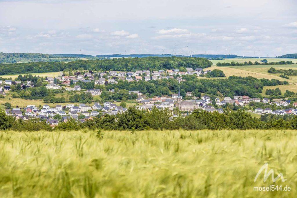 Trierweiler-Panorama