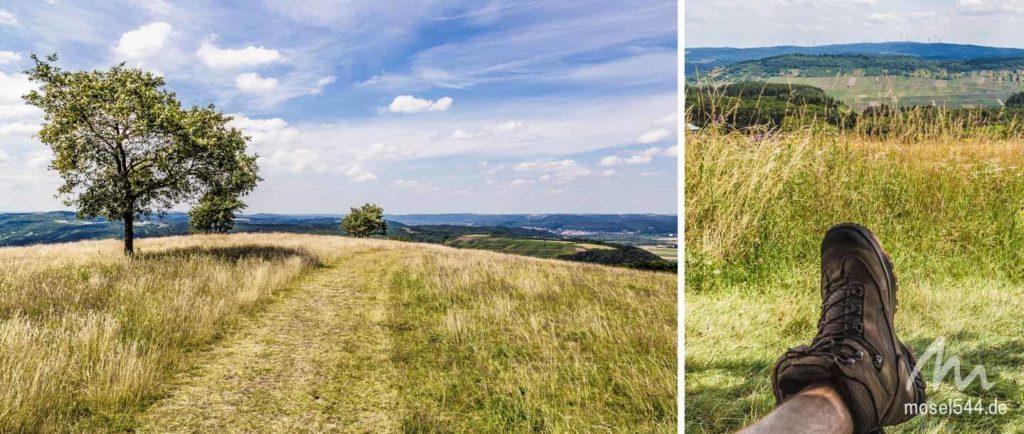 Mehringer Berg mit Aussicht in Hunsrück und Eifel
